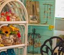 LYMI-Oddities-St-Augustine-Beach-gift-shop-local-art-artists-9